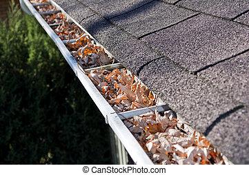 Home maintenance: fall leaves clogging rain gutter.