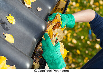 Leaves in rain gutter - Leaves in a rain gutter during ...