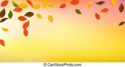 leaves., jaune, brun, automne, tomber, vert, n, rouges