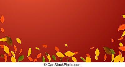 leaves., jaune, tomber, c, vert, rouges, automne, brun