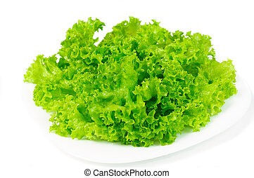 Leaves lettuce on plate on white background isolated