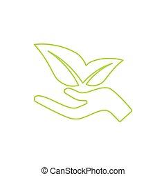 leaves., mão, ecológico, verde, human, crescendo, icon.