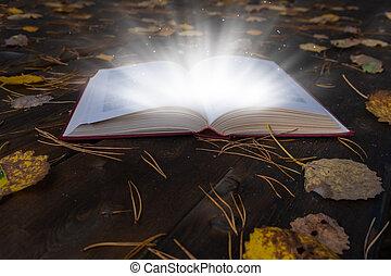 leaves., magia, legno, libro, autunno, tavolo luminoso