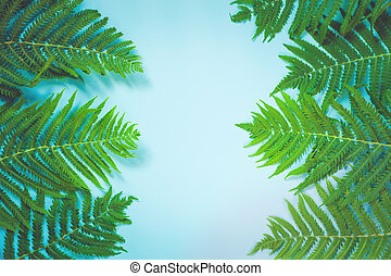 Leaves of fern on pastel blue background. Top view, isolated with copy space. Summer.