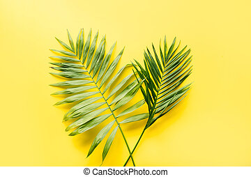 Leaves of monstera on yellow. Close up, isolated with copy space.
