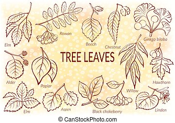 Leaves of Plants Pictogram Set - Set of Nature Pictograms,...