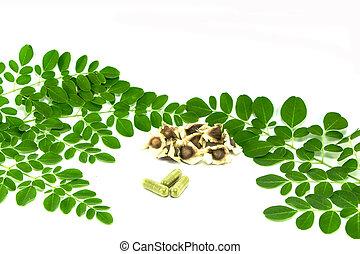 leaves of the Bitter cucumber-chinese (Moringa oleifera...