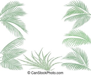 Leaves of tropical palms in pastel tones. Set. Monster, agave. Isolated on white background. illustration