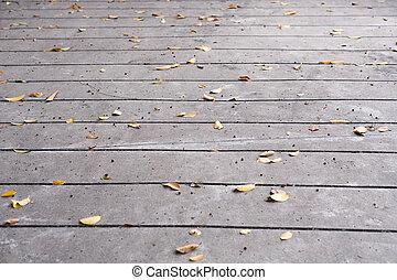 Leaves on cement floor