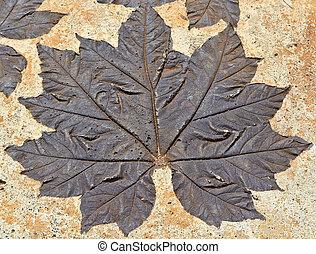 Leaves on mortar