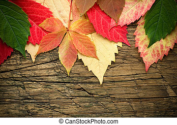Leaves on wood background