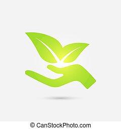 leaves., ręka, ekologiczny, zielony, ludzki, rozwój, icon.