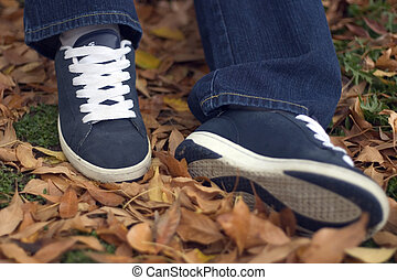 Leaves & Shoes