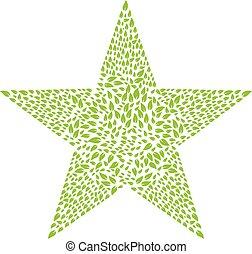 Leaves Star shape Logo design. - Abstracct star shape leaves...