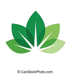leaves vector icon