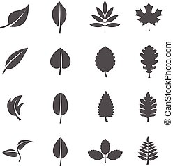 Leaves vector icons set