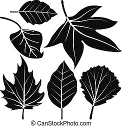 Leaves vector silhouette collection.
