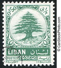 LEBANON - CIRCA 1974: stamp printed by Libanon, shows Cedar of Lebanon, circa 1974