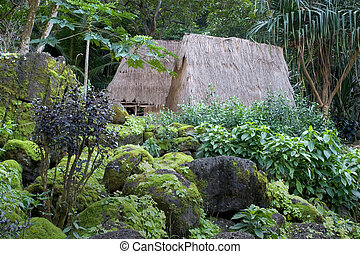 lebensunterhalt, kauhale--traditional, hawaiianer, standort