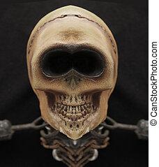 lebka, cenit zuby