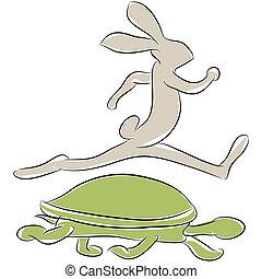 lebre, raça, tartaruga