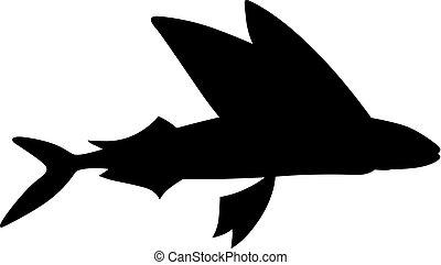 lecąc ryba, (exocoetus)