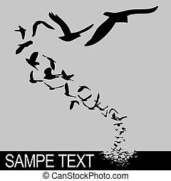 lecące ptaszki