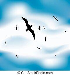 lecące ptaszki, w, niebo