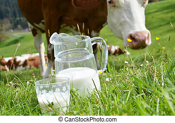 leche, y, cows., emmental, región, suiza