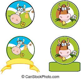 lechería, caricatura, vaca, banner.collection