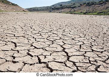 lecho, en, sequía