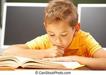 lectura, lección
