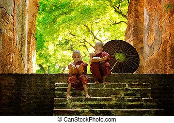 lectura, monje budista, aire libre