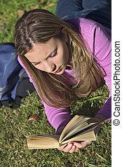 lecture, étudiant