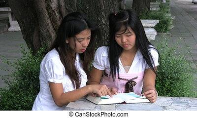 lecture, filles, asiatique, bible