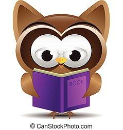 lecture, hibou, livre