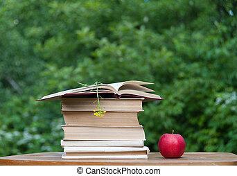 lecture, livres