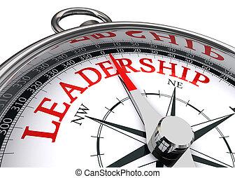 ledarskap, begreppsmässig, kompass