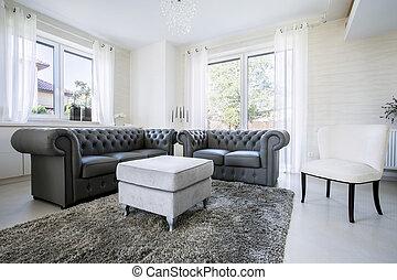 leder, levend, helder, kamer, sofa