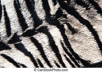leder, tiger, nachahmung, hintergrund