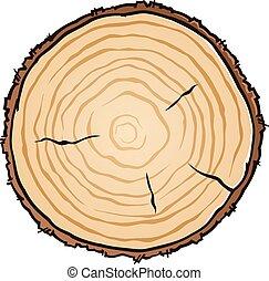 leeftijd, hout, ringen, vector, snede, illustratie