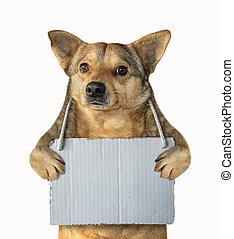 leeg, 2, dog, meldingsbord