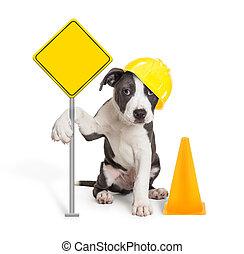 leeg, bouwsector, puppy, vasthouden, meldingsbord