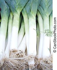 fresh vitamin spring onions leek healthy vegetable meal