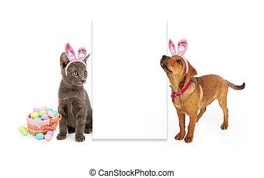 leer, zeichen, Ostern, junger Hund, kã¤tzchen