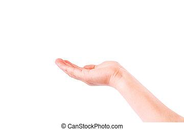 leerer , kind, hand, handfläche