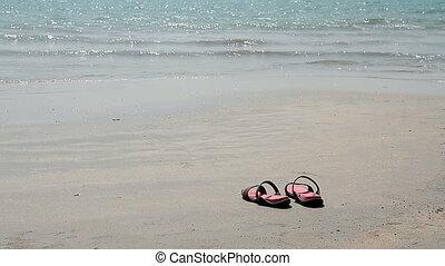 leesik, tengerpart, megfricskáz, homokos