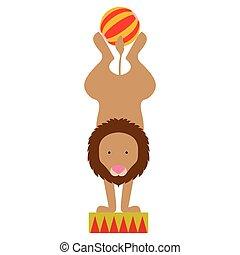 leeuw, circus, vrijstaand