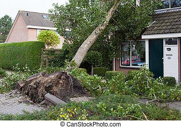 leeuwarden, nederland, oktober, 28, 2013:, massief, storm,...