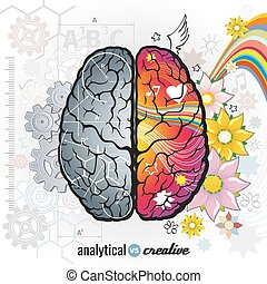 Left analytical and right creativity brain functions vector...